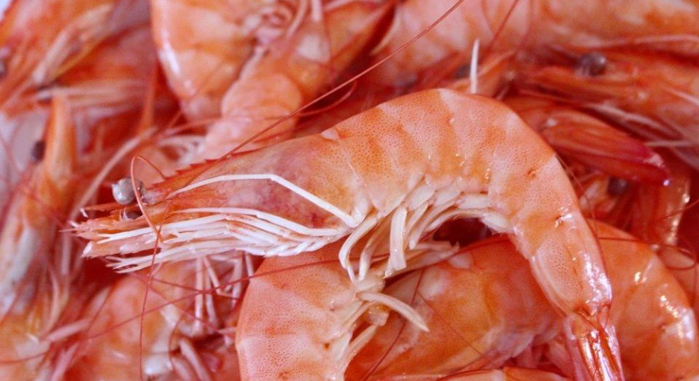 how long does cooked seafood last in the fridge